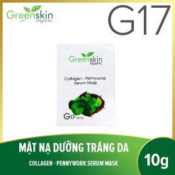 GreenSkin-mat-na-G17