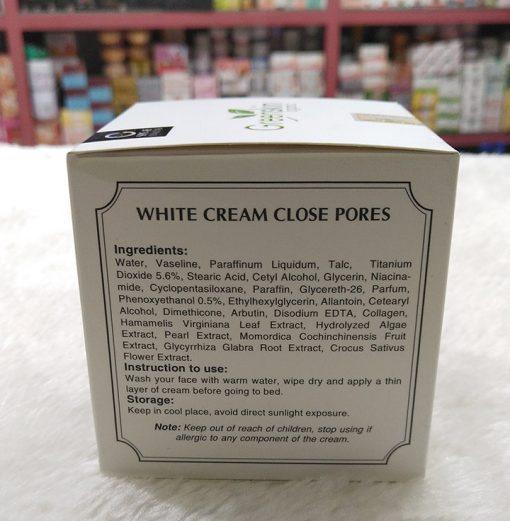 Greenskin-White-cream-Close-Pores-G2-thanh-phan